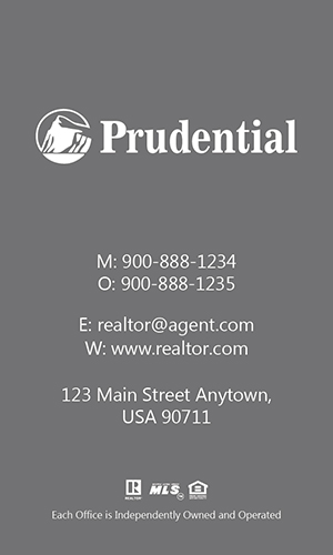 Prudential Realtor Vertical Business Card with Photo - Design #105471