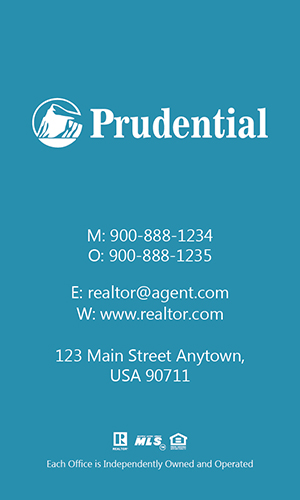 Prudential Realtor Vertical Business Card with Photo - Design #105472
