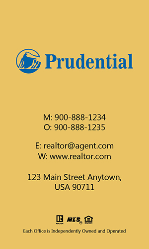 Prudential Realtor Vertical Business Card with Photo - Design #105475